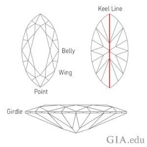 marquise-diamond-anatomy